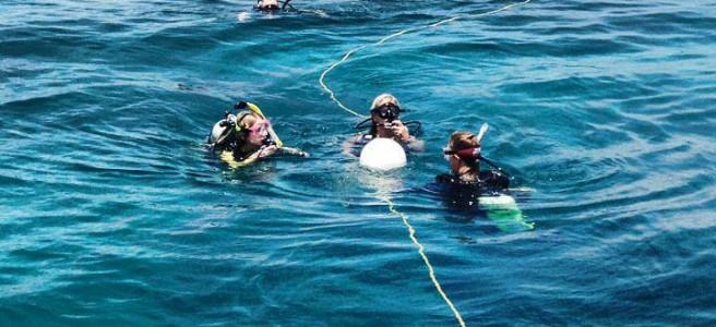 PADI Open Water Certification | Cool Destinations