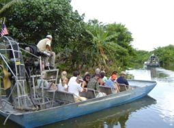 Miami Everglades Airboat Adventure with Transport