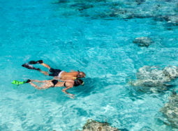 Miami to Key West Day Trip with Snorkeling