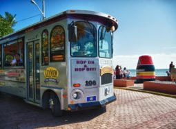 Miami to Key West Day Trip with Trolley Tour